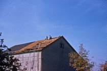 Image of New Barn Roof  1955 - 2013.1.564