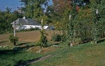 Image of Medicinal Garden  1957 - 2013.1.583