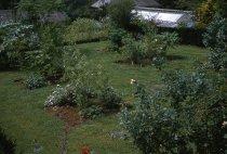Image of Medicinal Garden  1959 - 2013.1.594