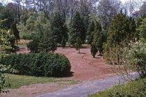 Image of Preparing Medicinal Garden  1960 - 2013.1.595