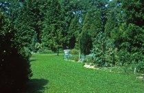 Image of Medicinal Garden  1961 - 2013.1.601