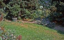 Image of Medicinal Garden  1963 - 2013.1.604