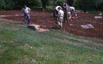 Image of Heath garden, Morris Arboretum 1963 - 2013.1.658