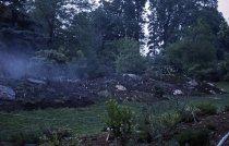 Image of Heath garden, Morris Arboretum 1965 - 2013.1.684