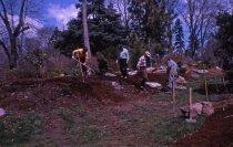 Image of Heath garden,  Morris Arboretum 1966 - 2013.1.693