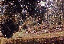 Image of Heath Garden  1965 - 2013.1.701