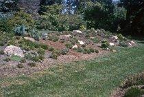 Image of Heath Garden  1965 - 2013.1.702