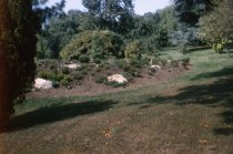 Image of Heath Garden  1965 - 2013.1.703