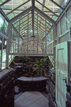 Image of Fernery Interior - 2013.27.7
