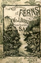 Image of Catalog of Ferns Cultivated by W & J. Birkenhead 1890s - 2013.27.95