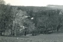 Image of Meadows  circa 1905 - 2004.1.614
