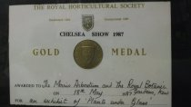 """Image of Chelsea Show Gold Medal Certificate 1987 - Certificate for Chelsea Show Gold Medal Certificate 1987 to the Morris Arboretum and the Royal Botanic Gardens, Kew on May 18, 1987 an exhibit of """"Plants Under Glass"""". Located in R. Gutowski office."""