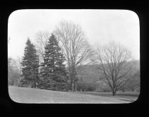 Image of Arboretum Seen From the Top of the Hill  1919 - 2015.35.12