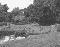 Image of Photo Proof of Rose Garden 1986 - 2015.48.1.24