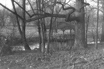 Image of Morris Boathouse on the Wissahickon Creek  ca 1910 - 2004.1.572