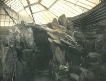 Image of Stone Garden Inside Fernery 1900 - 2004.1.806GN