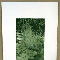 Image of Print, Intaglio - Minnetrista, Lily Pads II