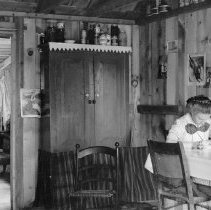 "Image of ""Emily in Cabin"" - Negative, Sheet Film"