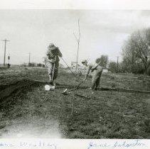 Image of Garden Club November 1949