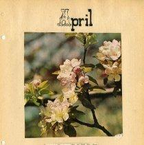 Image of Longs Peak Grange scrapbook p.  6