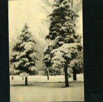 Image of Raymond White WW I Album, page 060