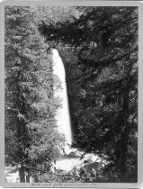 Image of 1962.238.15