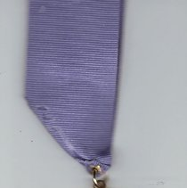 Image of Valley of Joplin AASR 100th Anniversary jewel and ribbon - 2014.11.120