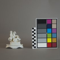 Image of With scale and color card