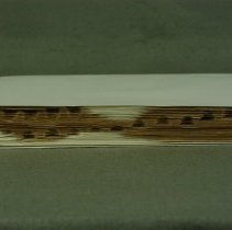 Image of Fore-edge, after conservation treatment