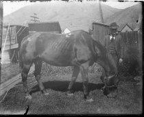 Image of 1983.021.0052 - 1983.021