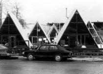 Image of Aspen A's, 1980