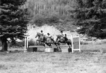Image of Horse jumping, 1960-