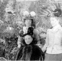 Image of Three Women in a Garden