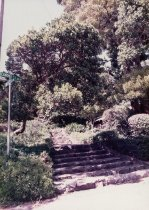 Image of Corner of Lovell and Cornelia Streets in Mill Valley, 1984 - Print, Photographic