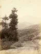 Image of A family on Throckmorton Avenue, circa 1900. - Print, Photographic