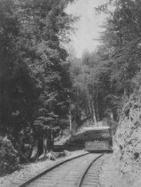 "Image of ""Booster"" gravity car on the way to Muir Woods, date unknown - Print, Photographic"