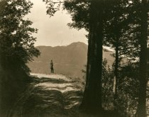 Image of View of Mt. Tamalpais, circa 1900  - Print, Photographic