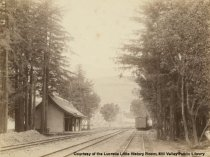 Image of Train station at Miller Avenue, circa 1891 - Negative