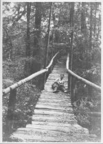 Image of Ocean View Trail to Muir Woods, 1911                                                                                                                                                                                                                           - Print, Photographic