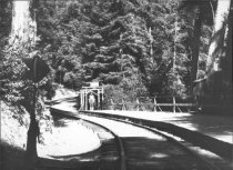 Image of Muir Woods Station, 1920s                                                                                                                                                                                                                                      - Print, Photographic