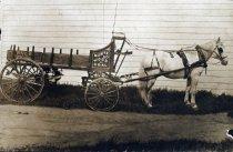 Image of Muntz & Co.Wood and Coal cart, circa 1901                                                                                                                                                                                                                  - Print, Photographic