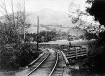 Image of North Pacific Coast narrow gauge tracks approaching Mill Valley, circa 1893                                                                                                                                                                               - Print, Photographic