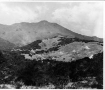 Image of Mill Valley, circa 1900