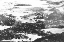 Image of Overlooking Mill Valley from upper summit, 1890s                                                                                                                                                                                                           - Print, Photographic