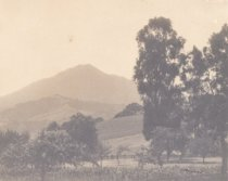 Image of Early Mill Valley with Mt. Tamalpais in background, date unknown                                                                                                                                                                                           - Print, Photographic