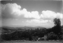 Image of Looking at Mill Valley from the west, circa 1920