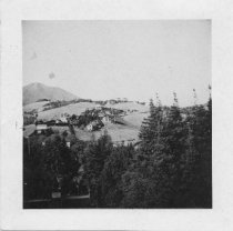 Image of Early View of Mill Valley, circa 1900