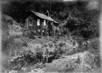 Image of Thaddeus & Ludmilla Welch cabin in Steep Ravine, circa 1898                                                                                                                                                                                                    - Print, Photographic