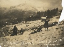 Image of Snow on Mt. Tamalpais, 1913                                                                                                                                                                                                                                    - Print, Photographic