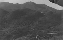Image of Mt. Tamalpais with horse and buggy, date unknown                                                                                                                                                                                                    - Print, Photographic